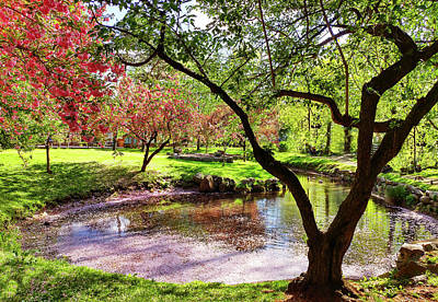 Photograph - Spring At Tappan Park Pond by Roger Bester