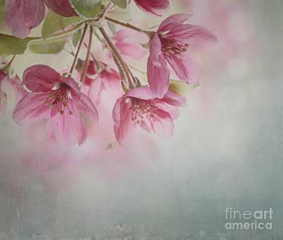 Spring Blossom Art Print by Jelena Jovanovic