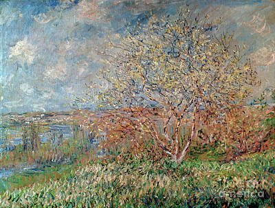 Marshes Painting - Spring by Claude Monet