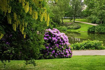 Photograph - Spring Garden by Inge Riis McDonald
