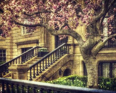 Mannequin Dresses - Spring in Boston by Joann Vitali