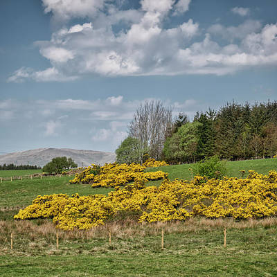 Photograph - Spring In Central Scotland by Jeremy Lavender Photography