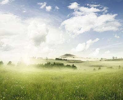 Spring Landscape Photograph - Spring Meadow by Les Cunliffe