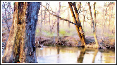 Photograph - Spring, Pennypack Creek, Pennsylvania by A Gurmankin