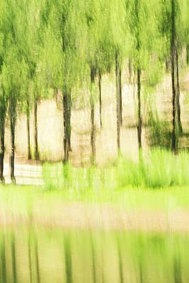 Photograph - Spring Reflections by Deborah Hughes