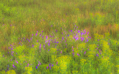 Photograph - Spring by Rick Mosher