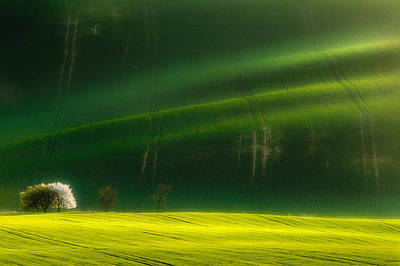 Moravia Photograph - Spring Time by Piotr Krol (bax)