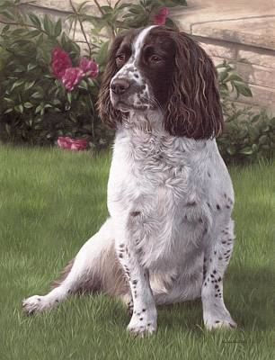 Springer Spaniel Painting Original by Rachel Stribbling