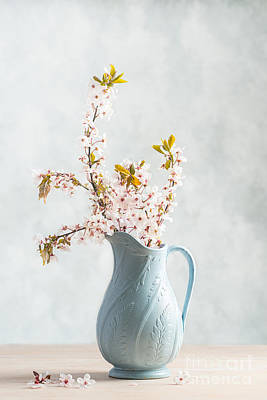Antique Flowers Vase Wall Art - Photograph - Springtime Blossom by Amanda Elwell