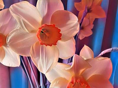 Photograph - Springtime by Nancy Pauling
