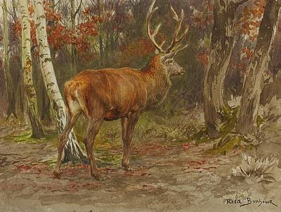 Wildlife Landscape Painting - Stag On Watch by Mountain Dreams