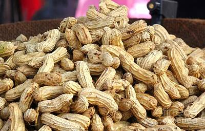 Photograph - Steamed Peanuts by Yali Shi