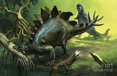 Rex Painting - Stegosaurus by English School