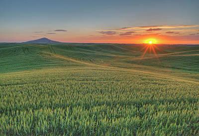 Photograph - Steptoe Butte Sunset by Doug Davidson