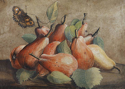 Still Life With Pears And A Butterfly Art Print