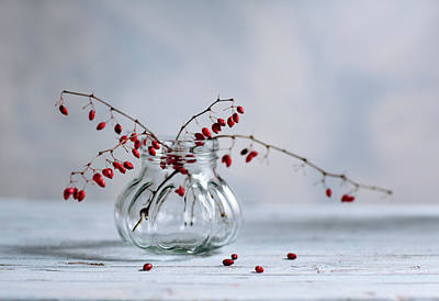 Autumn Photograph - Still Life With Red Berries by Nailia Schwarz