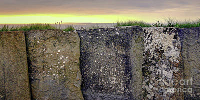 Photograph - Stone Fence Cliffs Of Moher Ireland by Lexa Harpell