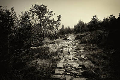 Stone Trail In The Mountains Art Print by Artur Bogacki