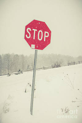 Photograph - Stop by Edward Fielding