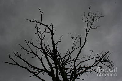 Art Print featuring the photograph Menacing Clouds Overshadowing by Cynthia Marcopulos