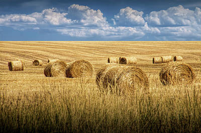 Photograph - Straw Hay Bales In A Summer Harvest Field In Montana by Randall Nyhof