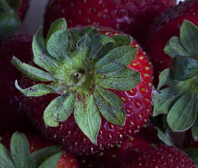 Strawberry 2 Art Print by Robert Ullmann