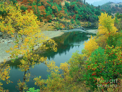 Photograph - Stream Fall Color Fir Trees Central California by Dave Welling