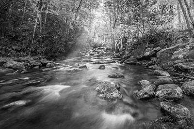 Stream In The Smokies Art Print by Jon Glaser