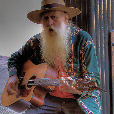 Musicians Royalty Free Images - Street Musician Royalty-Free Image by David Patterson