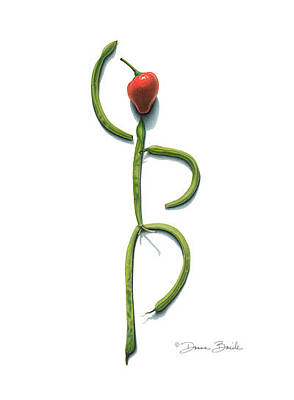Drawing - Stringbean Chili Pepper Arabesque by Donna Basile