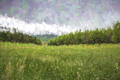 Smokey Mountains Digital Art - Stuck In The Field II by Jon Glaser