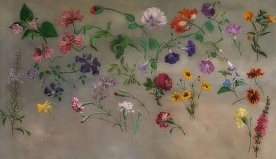 Painting - Studies Of Flowers by Treasury Classics Art