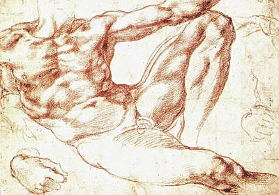 Michelangelo Painting - Study For Adam by Michelangelo Buonarroti
