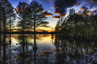 Photograph - Stumpy Sunset by Pete Federico