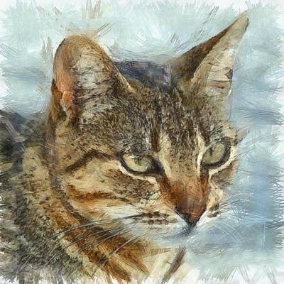 Drawing - Stunning Tabby Cat Close Up Portrait by Tracey Harrington-Simpson