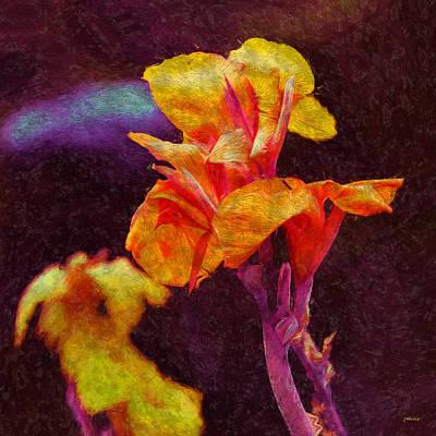 Photograph - Stylish Sword Lily by John M Bailey