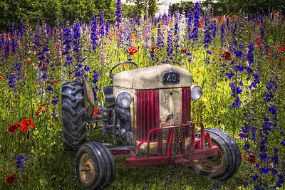 Purple Ford Photograph - Summer Fields by Debra and Dave Vanderlaan