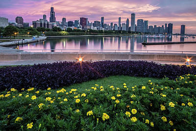 summer flowers and Chicago skyline Art Print