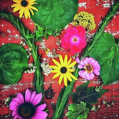 Photograph - Summer Flowers by Virginia Folkman