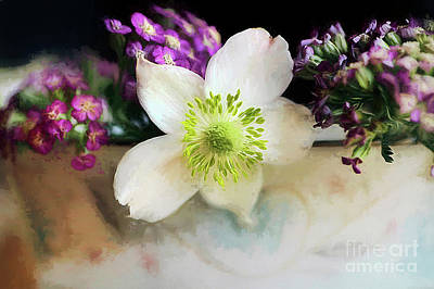 Thimbleweed Photograph - Summer Fragrance by Darren Fisher