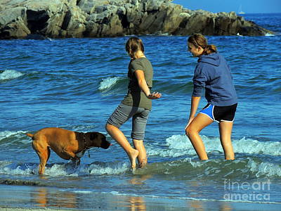 Photograph - Summer Fun by Marcia Lee Jones