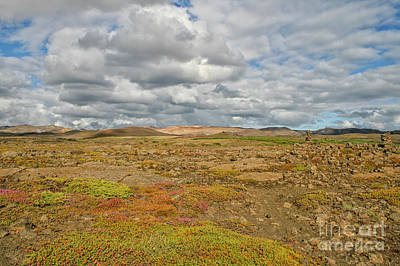 Photograph - Summer In Iceland by Patricia Hofmeester