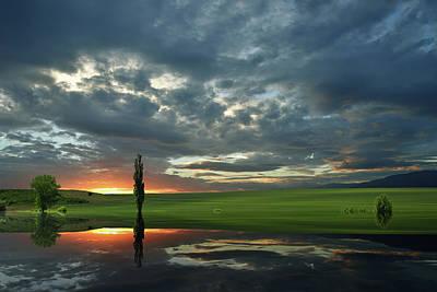 Photograph - Summer Memories... by Juliana Nan