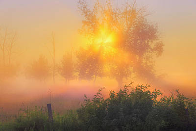 Photograph - Summer Sunrise by Dan Jurak