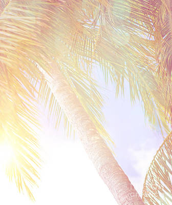 Photograph - Summer Vacation Background by Anna Om
