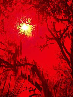 Photograph - Sun Drips Red by Florene Welebny