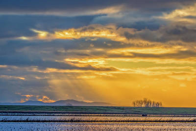 Photograph - Sun Rays At Sunset. by Marc Crumpler