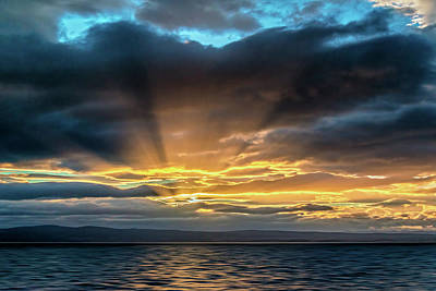 Photograph - Sun Rays by Maria Coulson