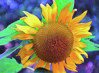 Art Print featuring the photograph Sunflower by Allen Beatty
