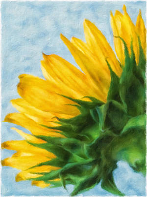 Mixed Media - Sunflower  by Jonathan Nguyen